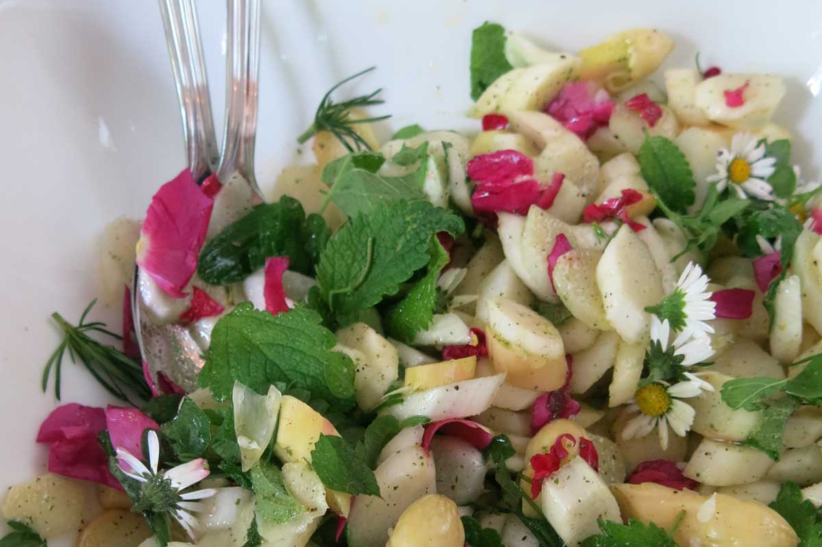 Vitalstoffreiche Vollwertkost Wildpflanzenküche Kochschule